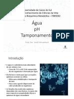Aula 2 - Água pH E tampão