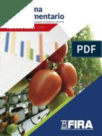 Panorama-Agroalimentario-Tomate-rojo-2019