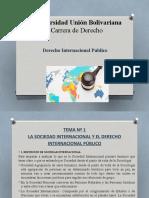 Tema N1 derecho Internacional Publico