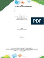 Fase 3 - Desarrollo de Un Plan de Accion Metodologico