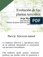 02 - Evolución de las plantas terrestres