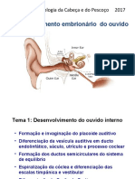 aula ouvido