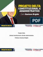 Projeto Delta - Processo Legislativo - 25.03 - Gustavo Brígido
