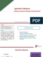 U1_Derecho Tributario, Derecho Tributario Constitucional