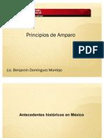 Principios Amparo
