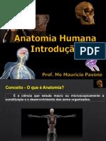 AULA 1 Introdução e Nomenclatura Anatomica - Odonto - 22.02.2021(1)