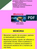370408851-MEMORIA-ppt