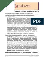 Adubação organomineral e NPK na cultura do milho