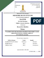38_ Messelmi_valorisation Des Dechets Solides d'Huilerie Cas de Grignons d'Olive Comme Agregat d'Un Beton Allege