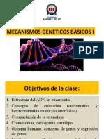 Clase 3. Mecanismos geneticos básicos I 2021