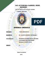 INFORME ANEMIA CRONICA