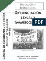 Histologia Diferenciacion Sexual