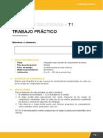 Guía T1 Comu 3 Alterno (1)