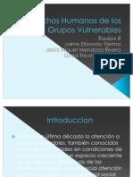Derechos Humanos de los Grupos Vulnerables (2)