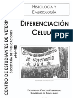Histologia- Diferenciacion Celular