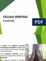 1-PLASTIDE