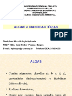 ALGAS E CIANOBACTÉRIAS