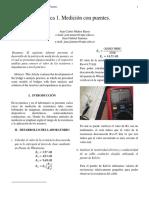 Laboratorio Puentes - Informe
