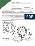 Sol- fotossíntese