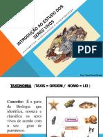 DIVERSIDADE Sistematica classificacao e biodiversidade