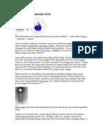 Struktur dan anatomi virus