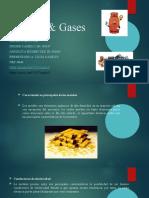 Metales Gases Presentacion 1