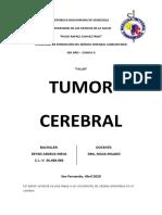 Tumor Cerebral - Deysis Meja