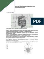 ED UNA- Sistema Digestório
