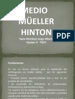 Medio Mueller Hinton