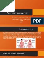 sistema endocrino tahni