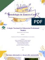 Metodologia de Zamora Casal 604