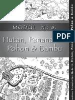 MOD8-reboisasi