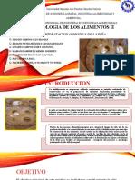 Deshidratacion Osmotica de La Piña Pptx