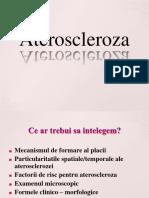 74676853-Ateroscleroza