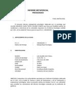 Informe Ps. METAPERITAJE CASO LUIS SOTO TOLOZA