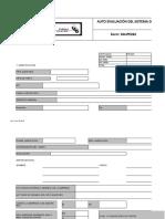 GPC179 2021 FAUPE262 Formato Autoevaluacion RUC Rev 25