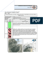 Perfil estratigrafico calicatas