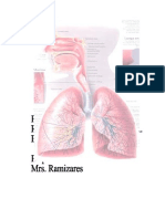 Pulmonary tuberculosis (PTB)