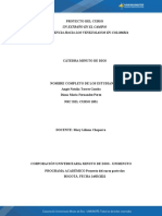 Plantilla - Segunda Entrega - 2021 (2)