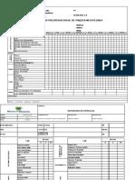 PGGFS-013-F020_v2 - Inspección de Vehiculos