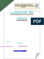 224831150 Rapport de Stage AXA