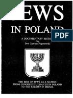 Jews_in_Poland_all