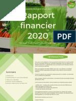 MSE Rapport Financier 2020
