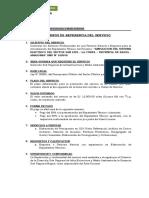 TERMINOS DE REFERENCIA ACTUALIZACION DE EXP. TEC.