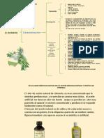 391839275 Cuadro Sinoptico Del Romero Maria Consuelo Uruena Pptx
