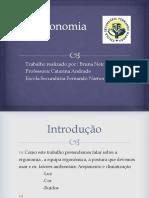 ergonomia-121203101015-phpapp02 (1)