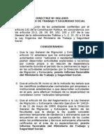 Directriz 02 2005