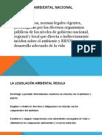 2 LEGISLACION NACIONAL Y FUENTES