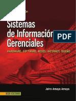 Sistemas de Información Gerenciales- Amaya