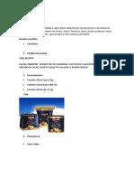 Ficha Tècnica Paneton